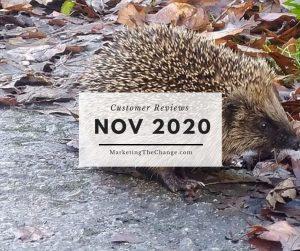 Website Reviews November 2020