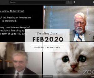 Trends Google - I am not a cat