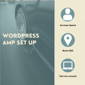 WordPress AMP Set Up