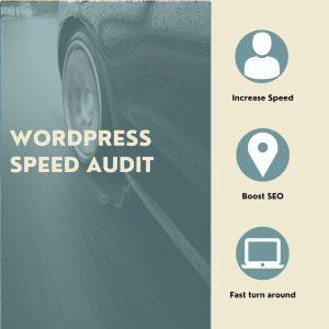 WordPress Speed Audit